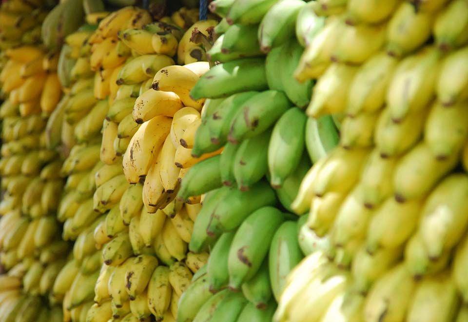 Alimentação recua 0,50% no IPCA de junho, diz IBGE