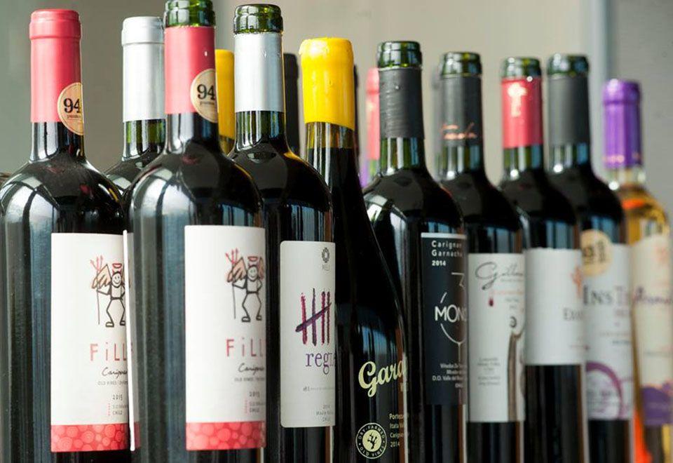 Vinhos brasileiros são destaques em festival no Chile