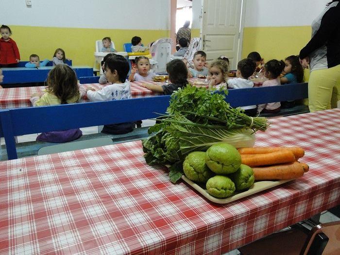 Merenda Escolar é abastecida com três toneladas de alimentos de produtores locais por semana / Prefeitura de São Sebastião