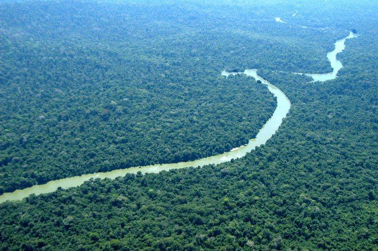 Governo apresenta projeto de lei que reduz floresta na Amazônia