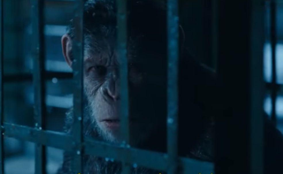 Planeta dos Macacos: A Guerra bate Homem-Aranha