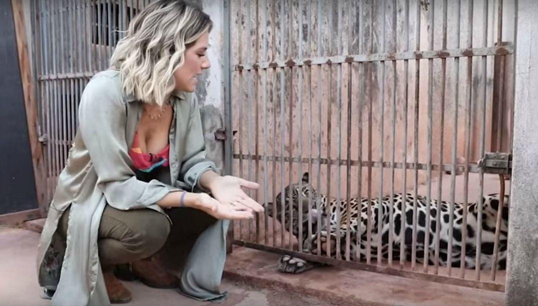 Giovanna Ewbank ajuda animais em extinção