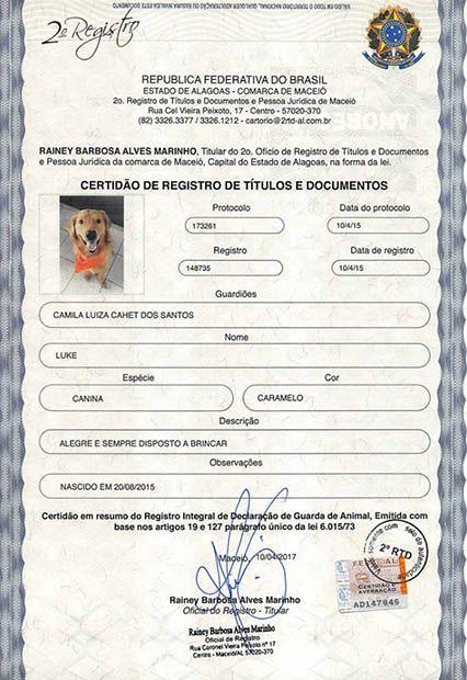 Identpet leva dados do animal e de seu tutor / Reprodução/Facebook