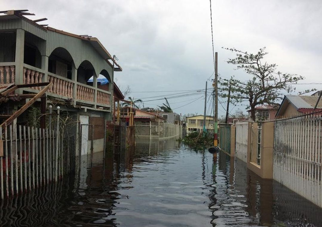 Porto Rico: número de mortes causadas por furacão Maria chega a 10