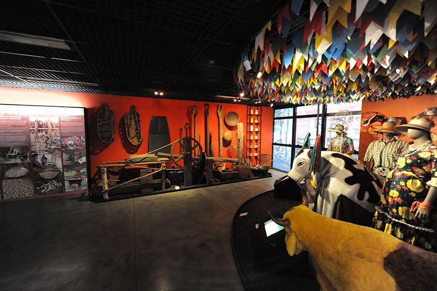 Museu do Homem do Norte vai exibir filme A Pequena Sereia / Divulgação/SEC