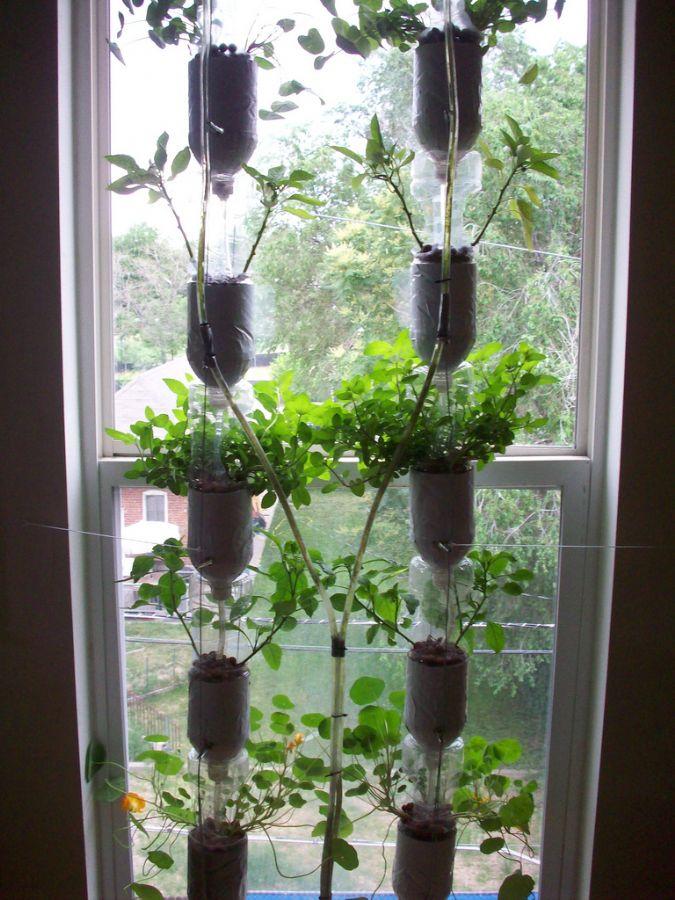 Horta na janela: ecologicamente correta / Foto: Divulgação/Windowfarms