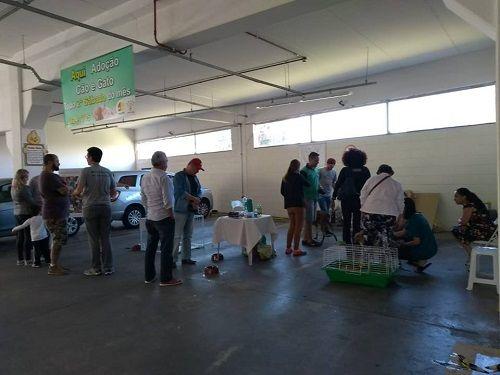 Taubaté recebe feira de adoção de animais do Centro de Zoonoses