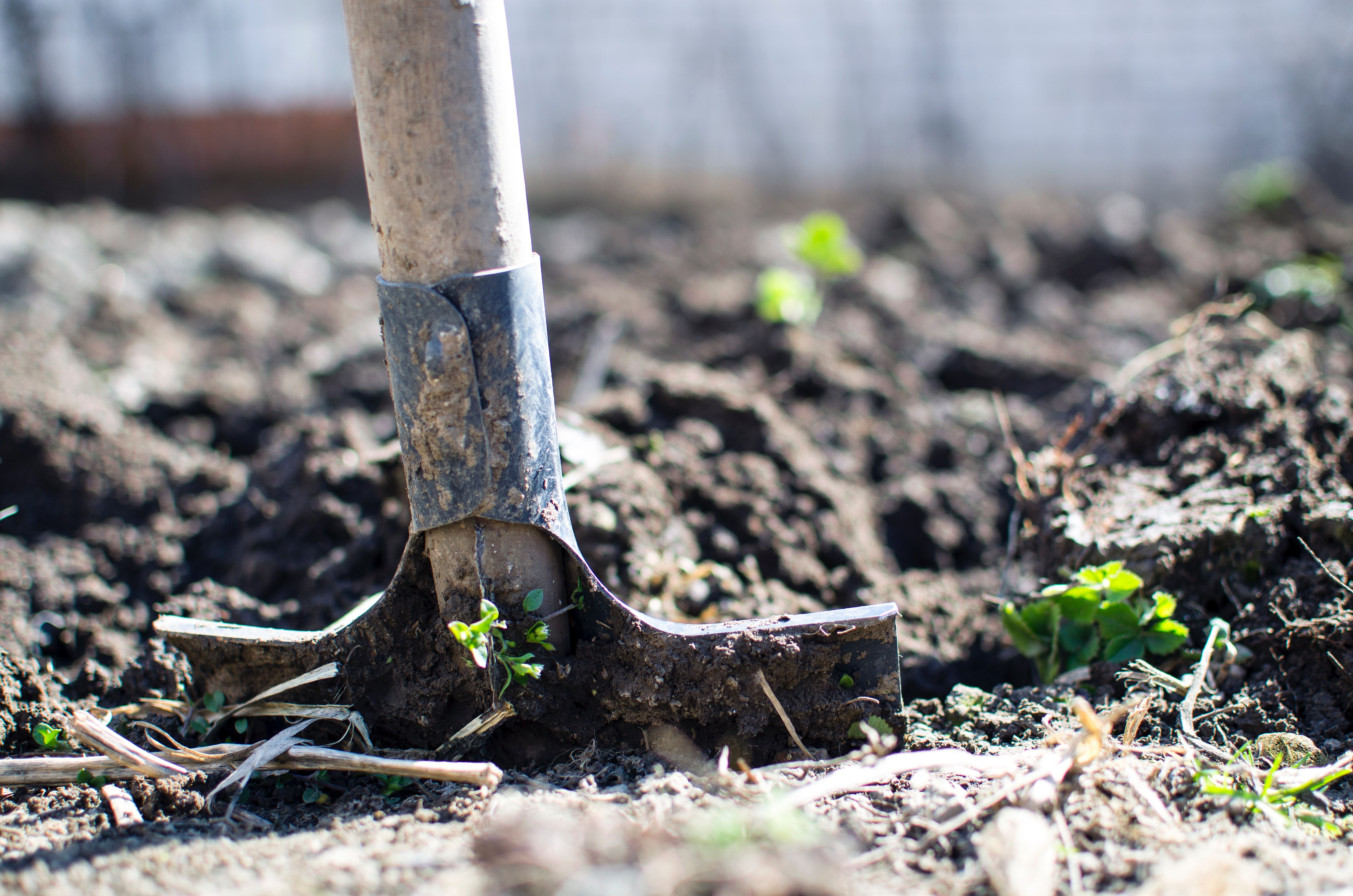 Agricultura é o foco do programa desta semana / Divulgação