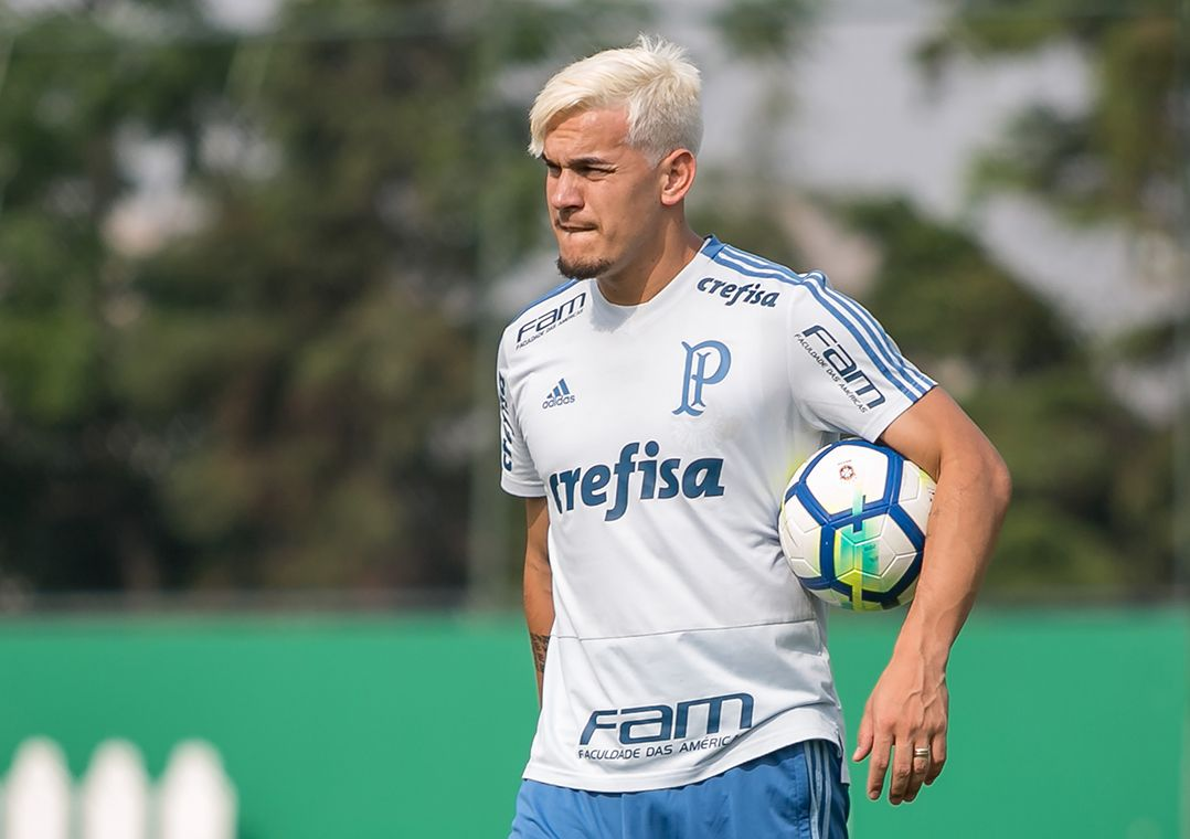 Gómez elogia estrutura do Palmeiras: 'É como jogar na Europa'