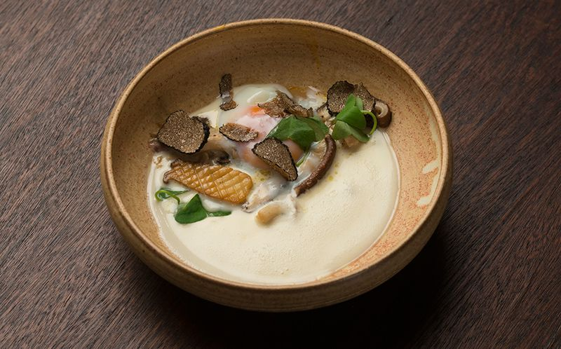 Fricassé de cogumelos com ovo poché, trufa e creme de grana padano