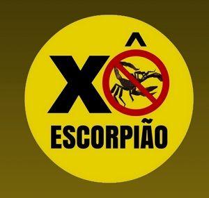 Campanha contra escorpiões começa nessa segunda-feira em Taubaté