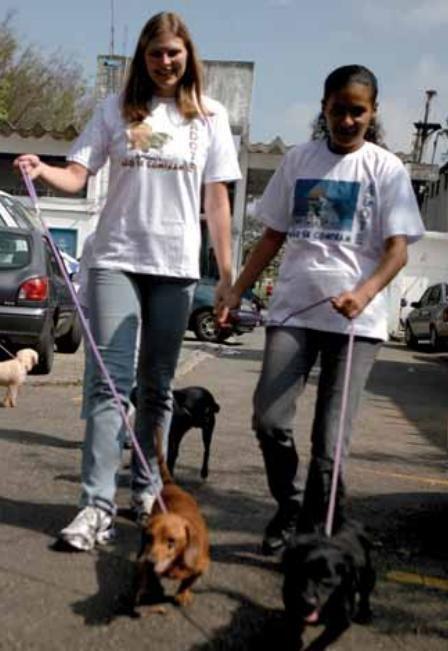 Animais do canil de São Caetano saem uma vez por semana para passear no entorno do Centro de Controle de Zoonoses da cidade