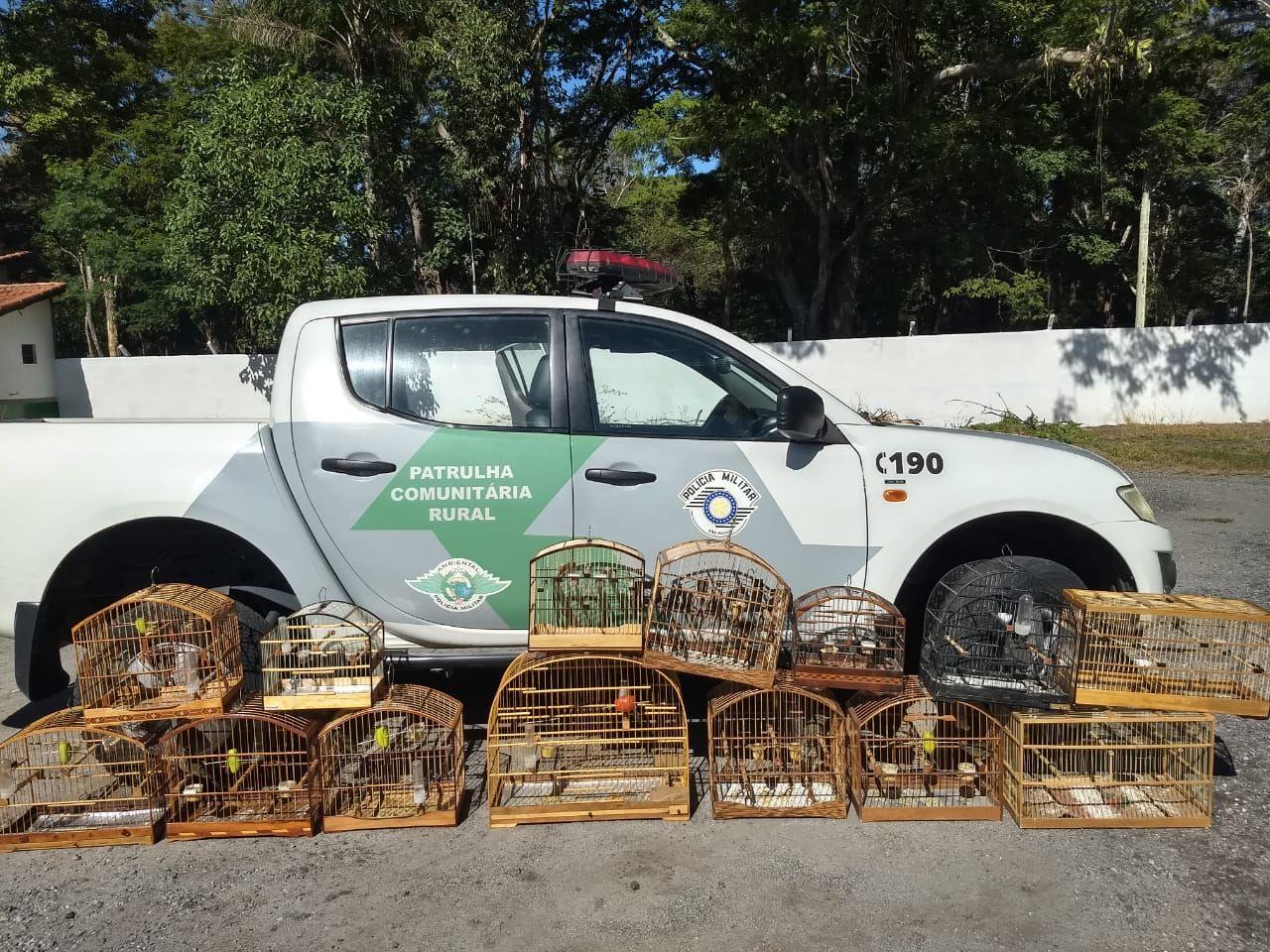 Catorze aves são resgatadas de cativeiro em Cruzeiro
