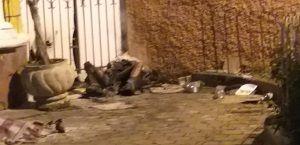 Morador de rua morre queimado em São Luiz do Paraitinga