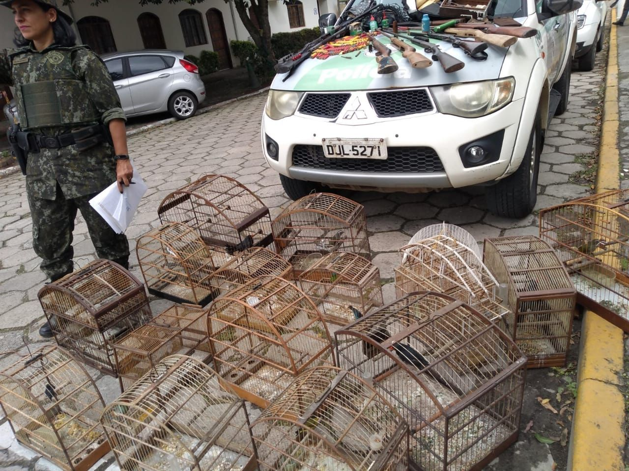 Dupla é detida e 22 aves silvestres são resgatas de cativeiro