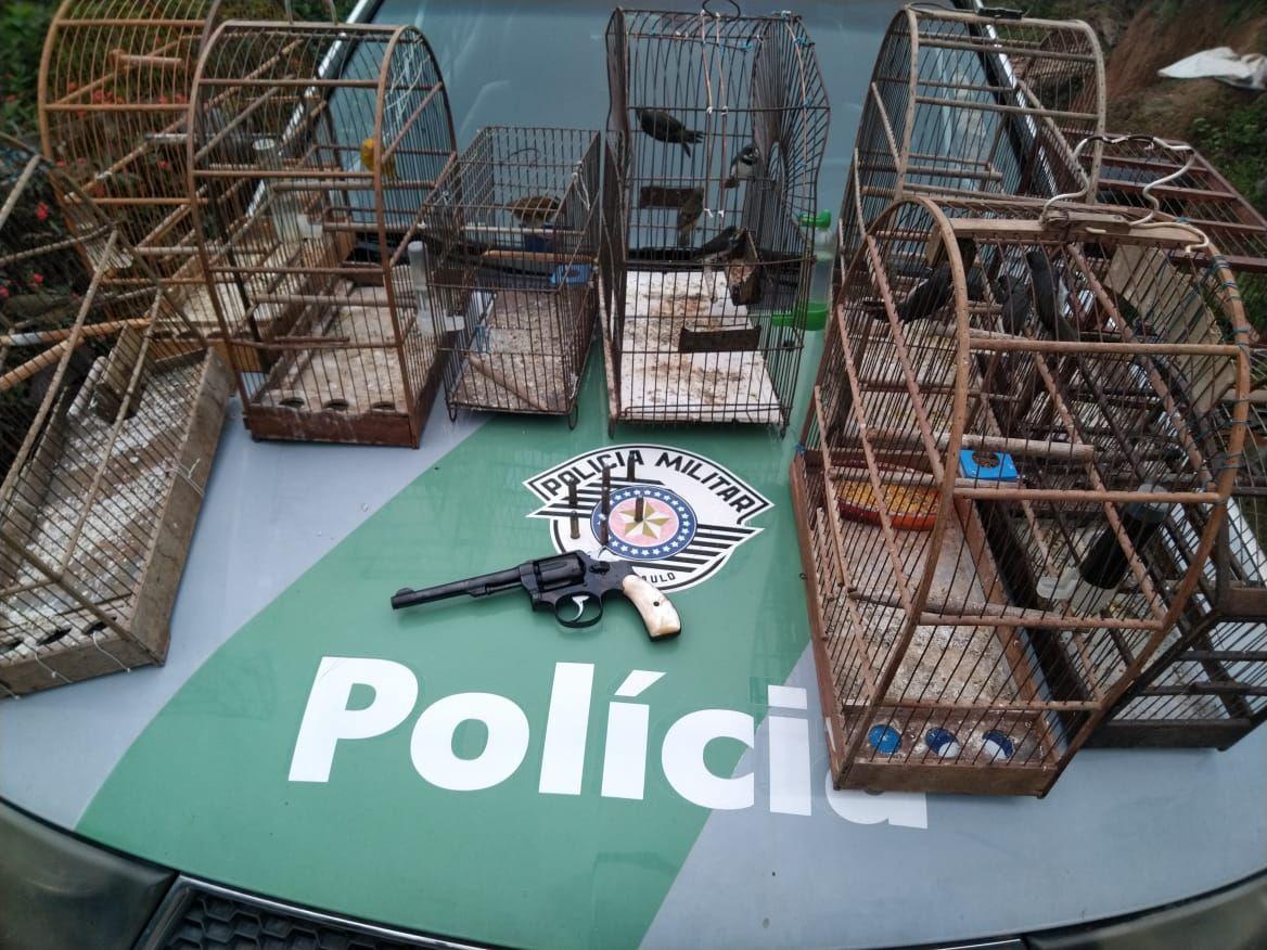 Polícia resgata 19 aves silvestres e apreende três armas de fogo