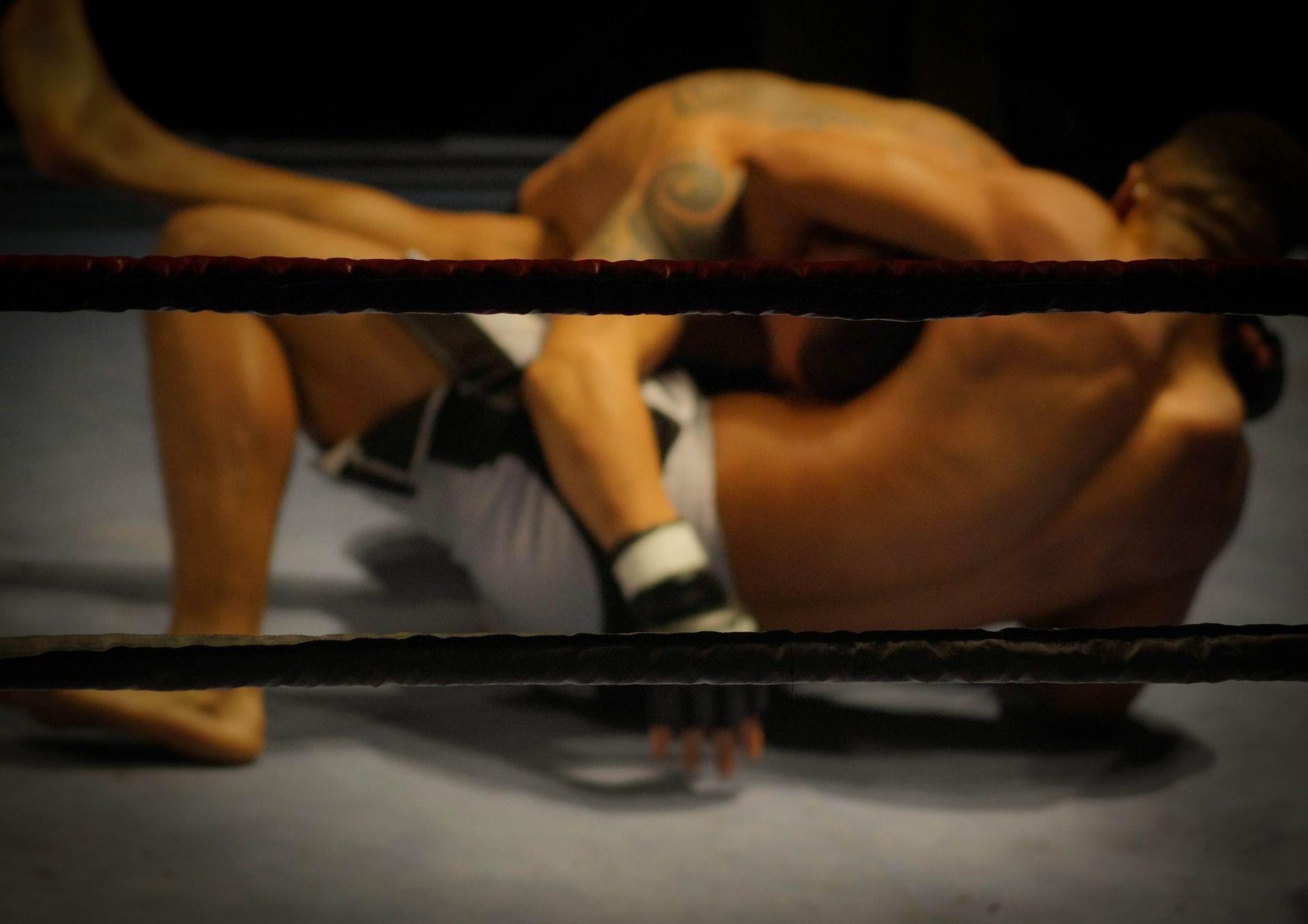A história do MMA