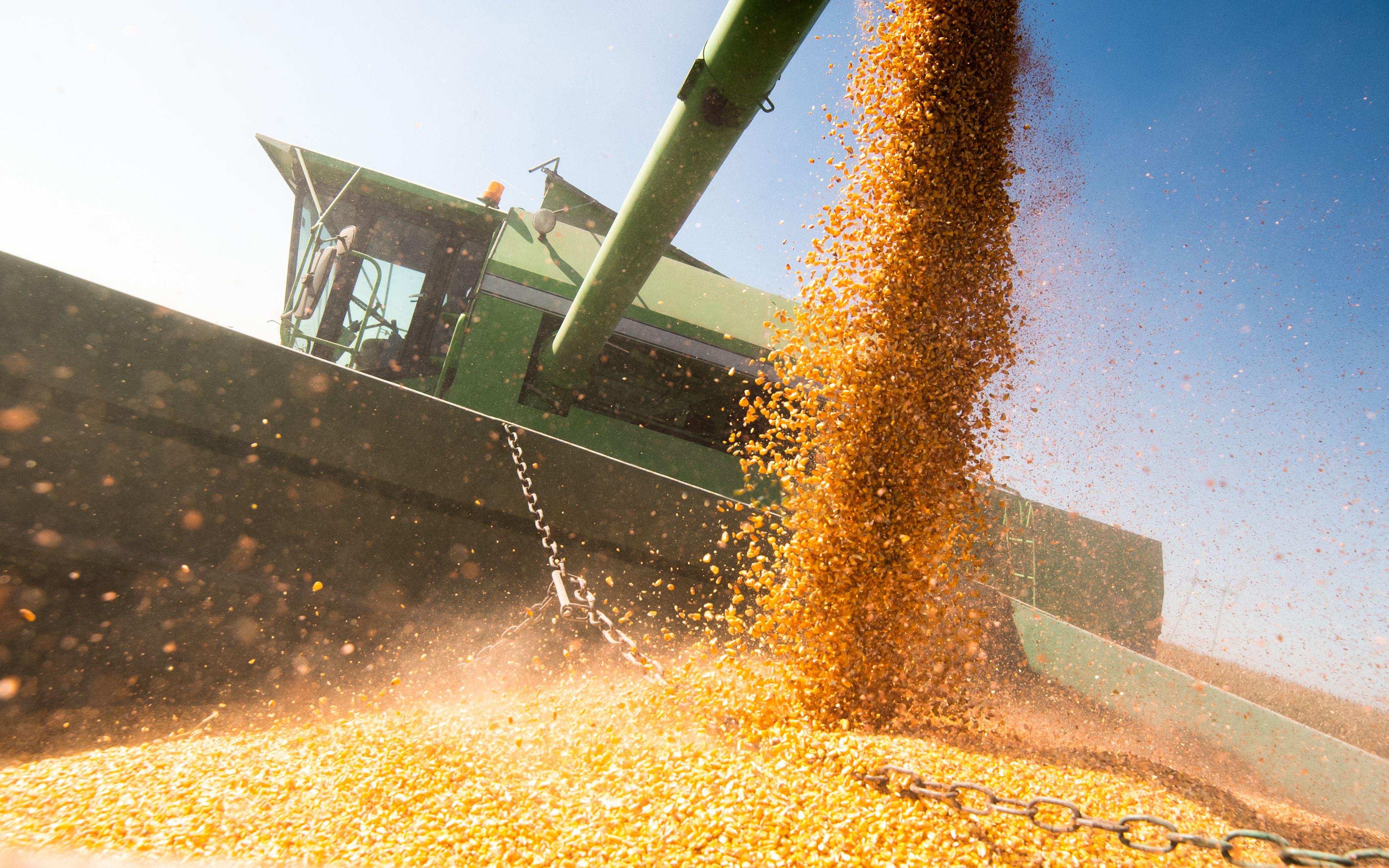 Brasil é estratégico para a segurança alimentar mundial