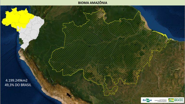 De qual Amazônia estamos falando?