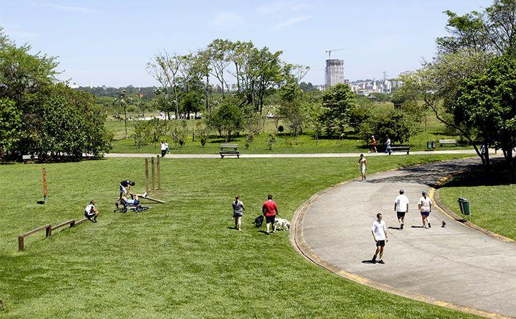 São Paulo pode ganhar nova área verde com a criação do Parque Bixiga