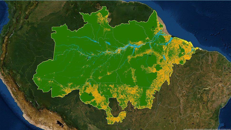 Quantos agricultores desmatam na Amazônia?
