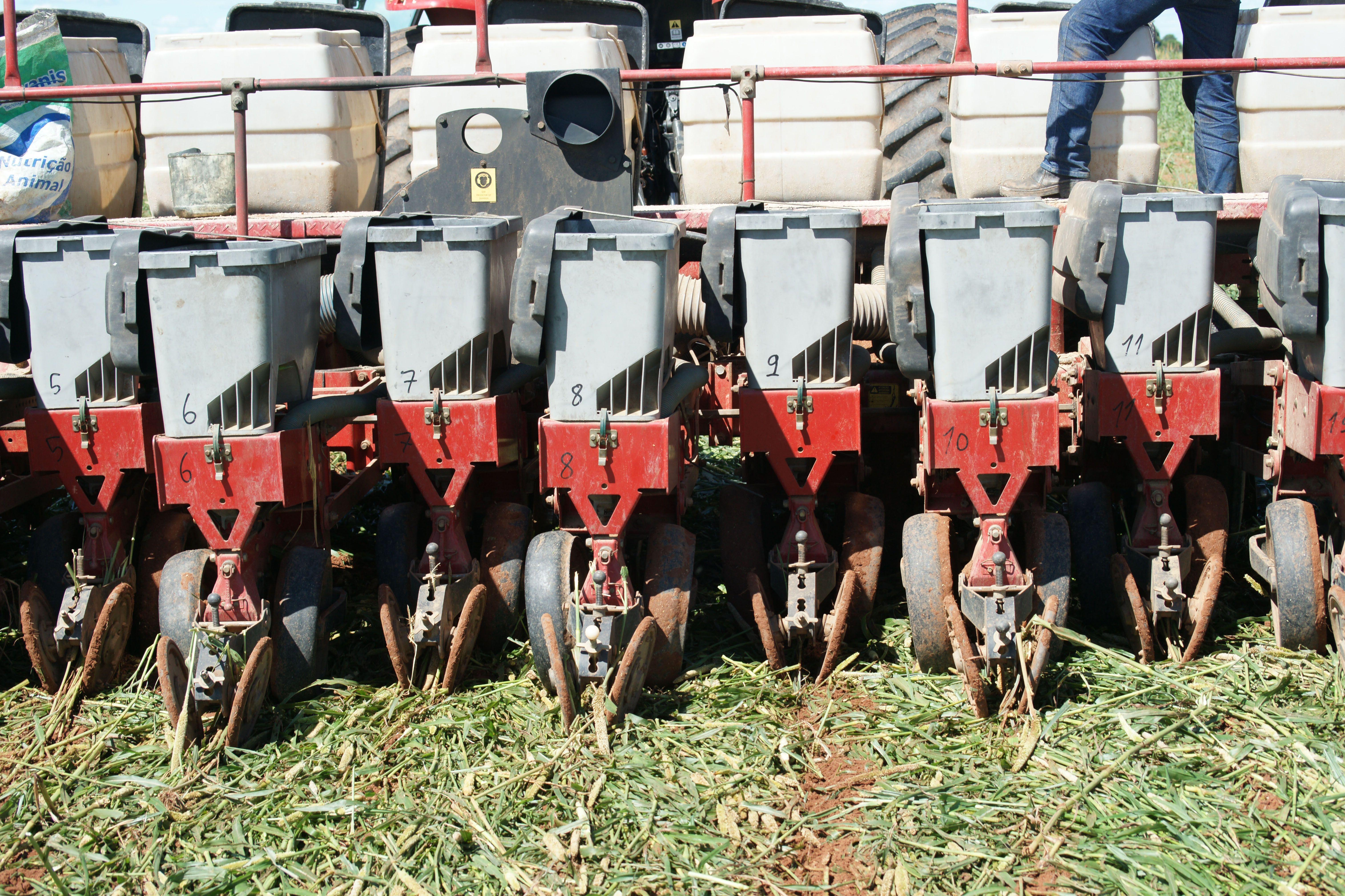 Brasil virou potência agrícola ao excluir a aração