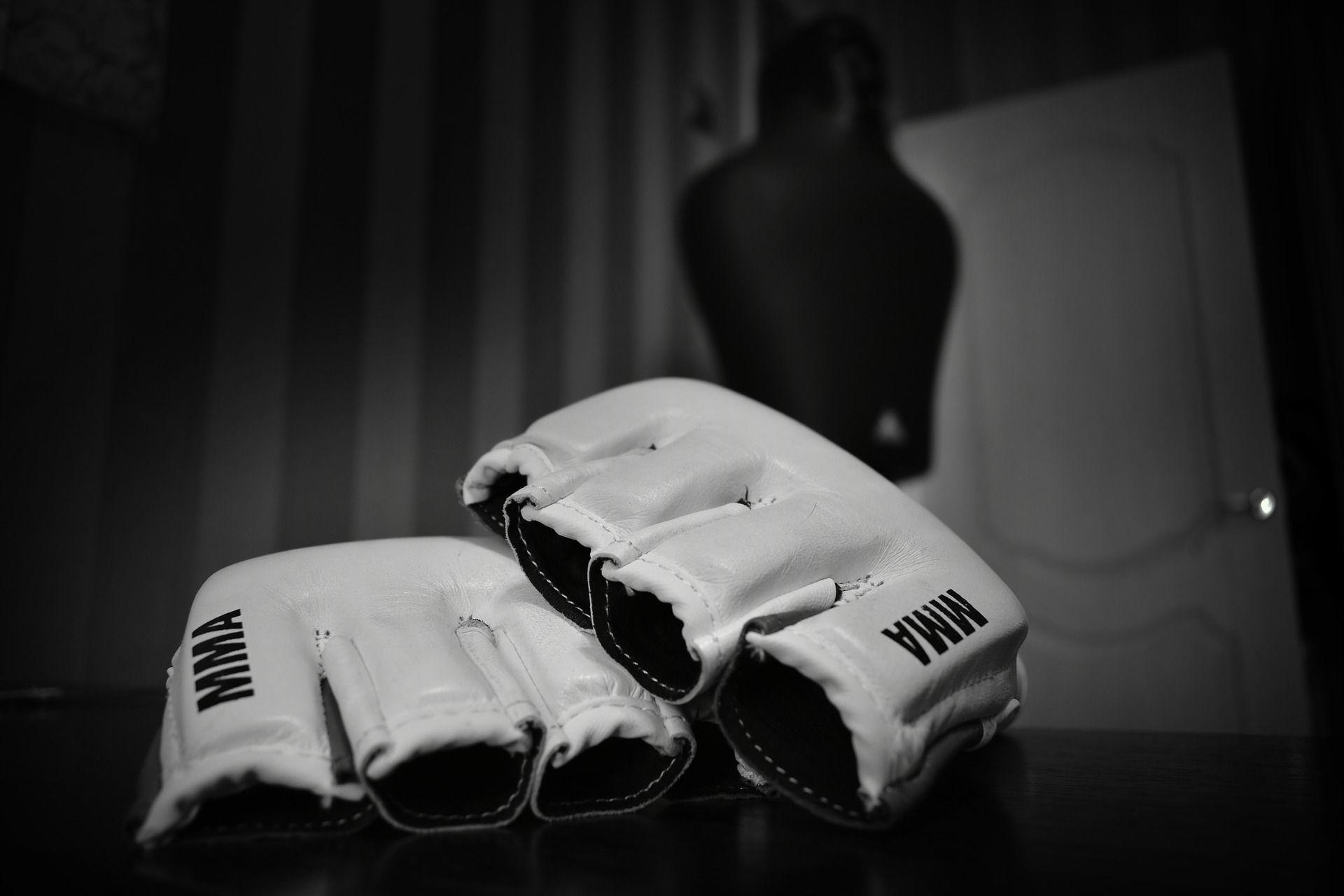Luvas de MMA. / Divulgação