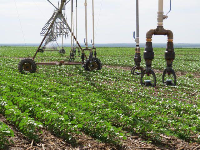 Tecnologias agrícolas ajudam a controlar variabilidades climáticas