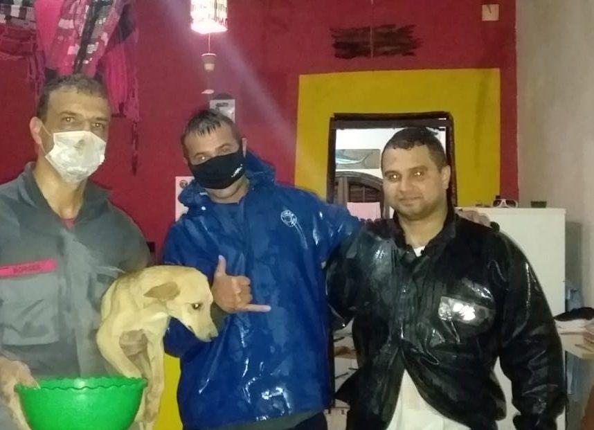 Bombeiros resgatam cão preso em vão de 13cm, em São Sebastião