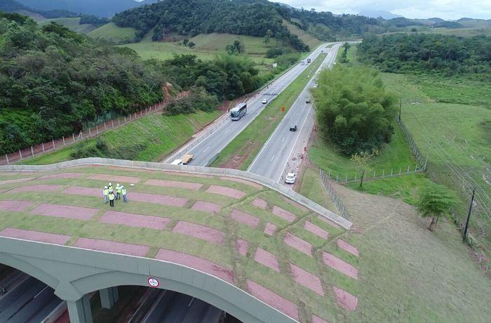 Imagem mais compartilhada Rodovia BR-101 ganha primeiro viaduto vegetado do País