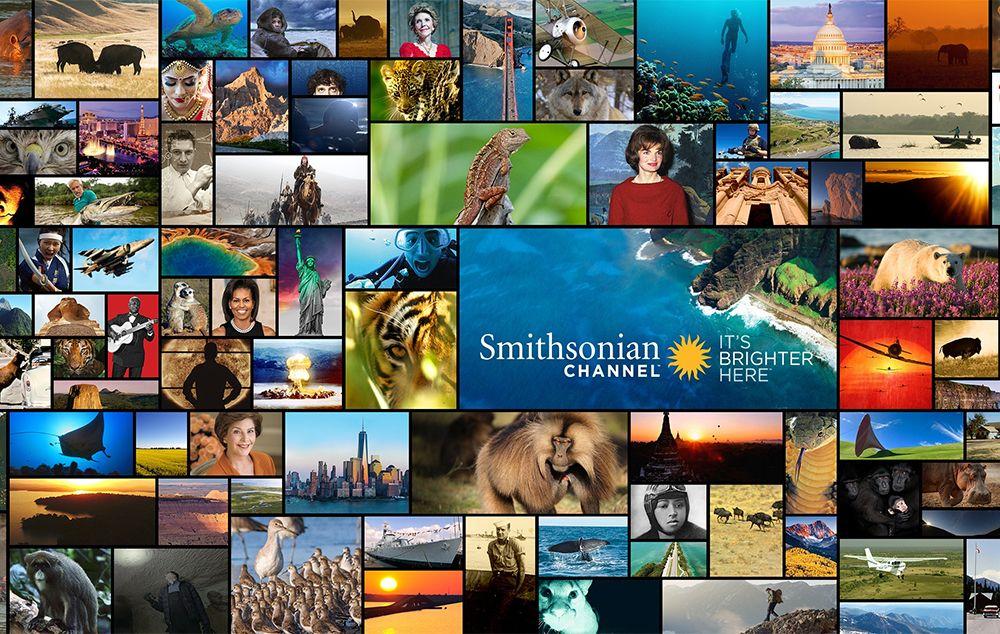 Smithsonian Channel entra na grade de canais da BluTV