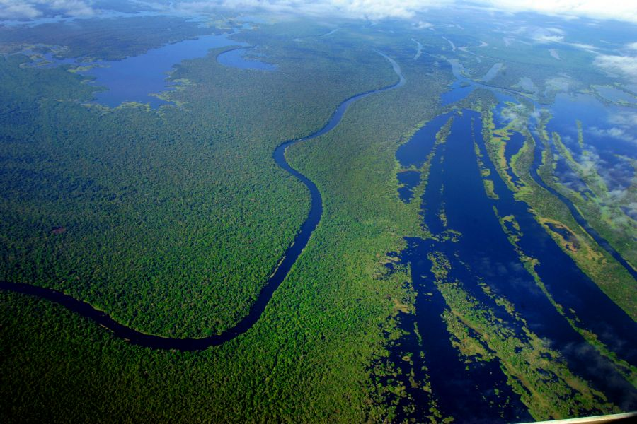 Vista aérea da floresta amazônica, na região de Mamirauá, Estado do Amazonas / Dida Sampaio/AE