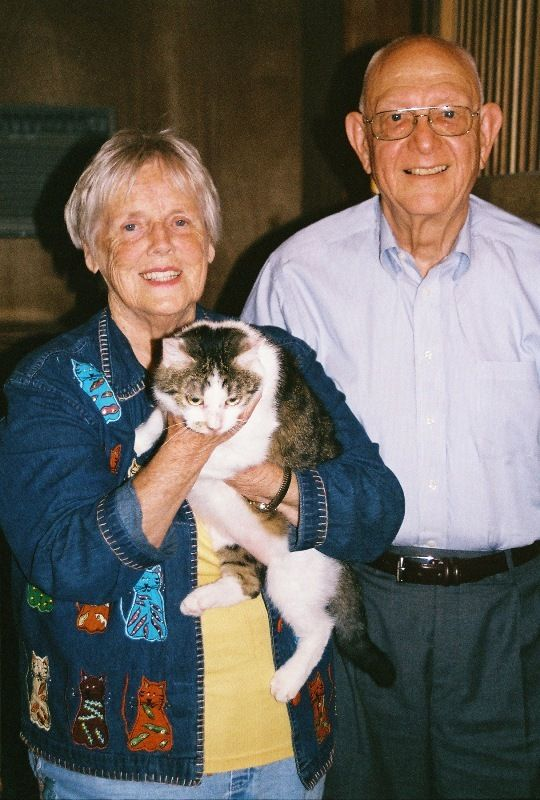 A gata CC tornou-se o primeiro felino a ser clonado / Bill Murphy /AFP