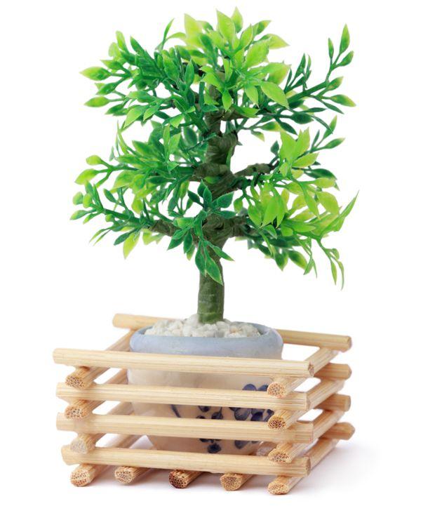 Os convidados se lembrarão sempre do dia do seu casamento enquanto olharem a árvore crescer
