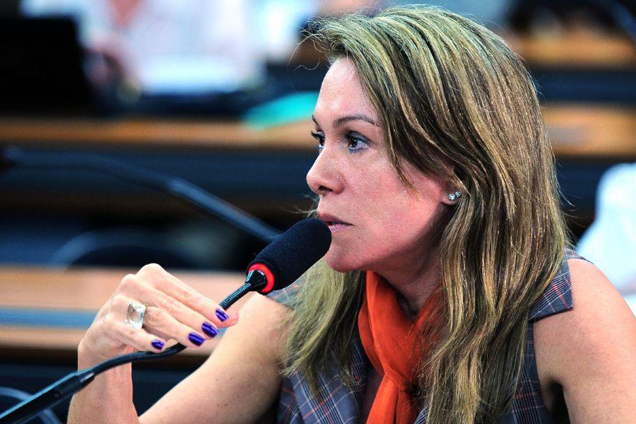 Resultado de imagem para Relatora do projeto de lei  a Deputada Federal Teresa Surita