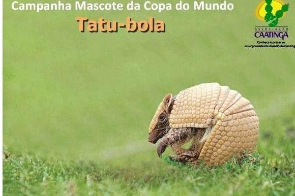 Segundo portal oficial da Copa, o tatu-bola será o mascote / Reprodução/Portal2014.org