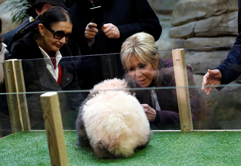 A primeira-dama da França, Brigitte Macron, participou do batismo do primeiro panda nascido no país