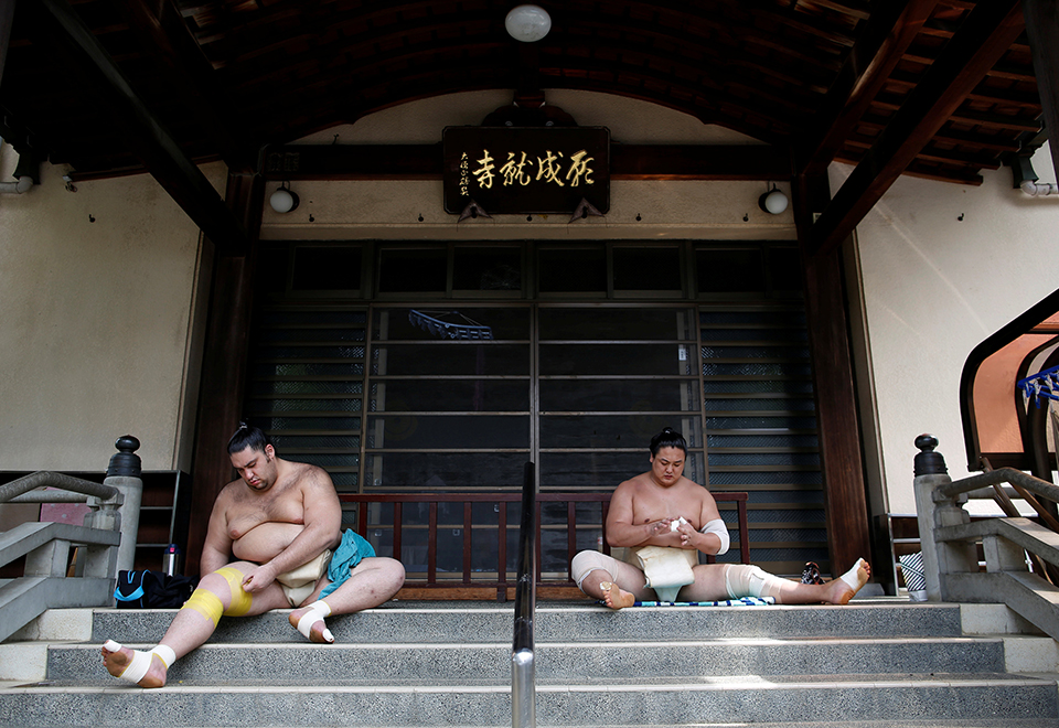 Conheça curiosidades do sumô
