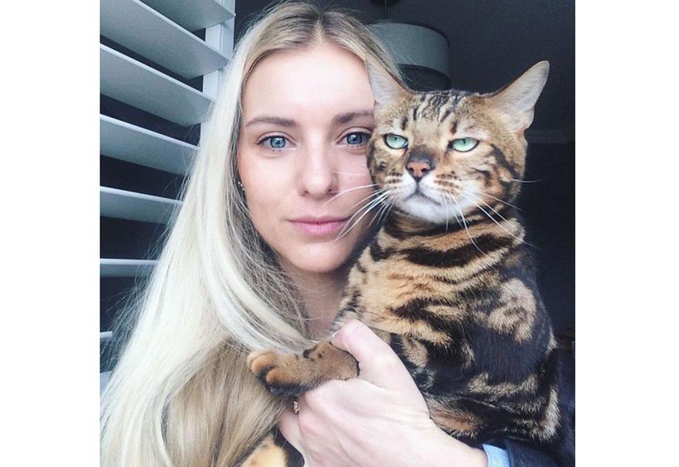 15 provas de que gatos odeiam selfies