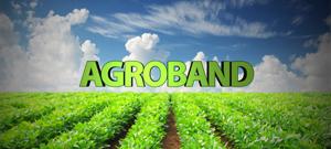 Agroband.jpg
