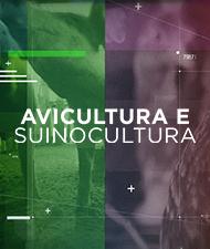 AVICULTURA E SUINOCULTURA