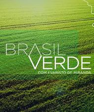BRASIL VERDE