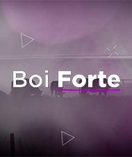 BOI FORTE