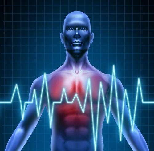 Como o Sistema Cardiovascular Adoece